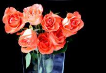 jakie kwiaty na urodziny